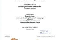 D13-DogoZerówka-Stowarzyszenie-Zwierzęta-Ludziom