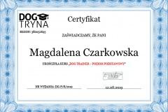 D16 - Certyfikat DogTrainer - Dogtryna