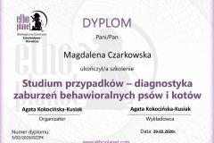 D23 - Studium przypadków - A. Kokocińska-Kusiak