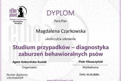 D24 - Studium przypadków - P. Kleszczyński
