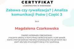 D37-Zabawa-czy-rywalizacja-Analiza-komunikacji-Psow-Wojtkow