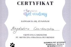 D7-Pet-Academy-Strategia-Pet-Biznesu