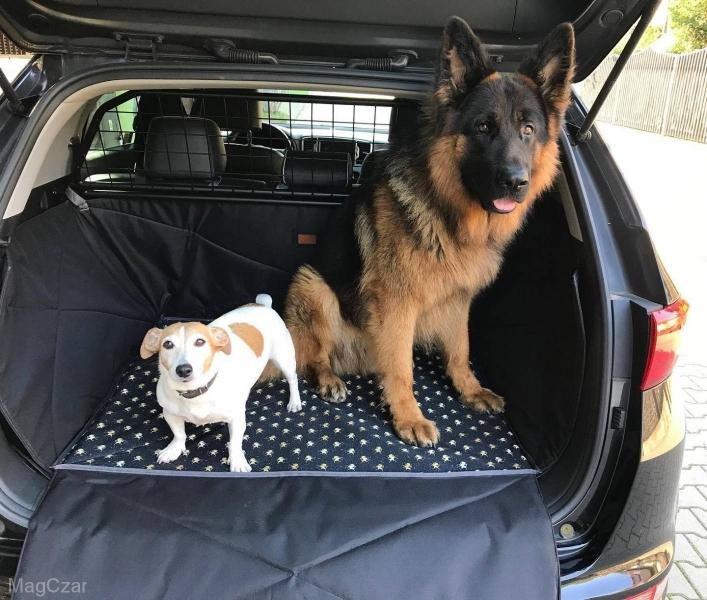 Mata do bagażnika
