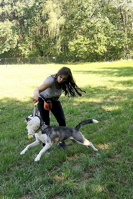 Trening psa - zabawa